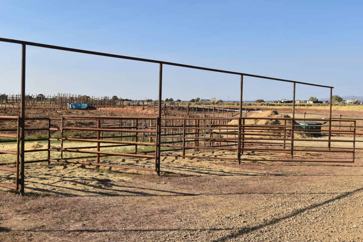 Horse Hotel Open Pen Hesperus CO